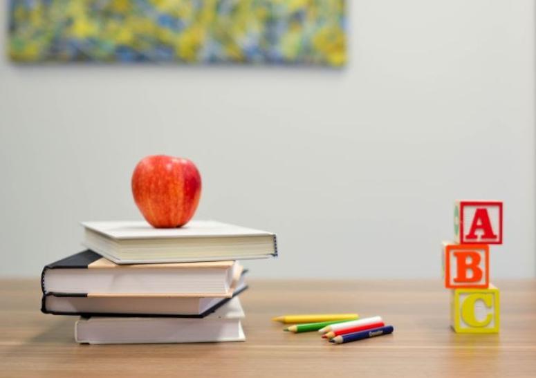 factores que influyen en el modelo curricular